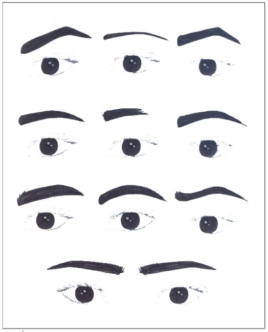 Inspirasi Bentuk Alis (Sumber: Dian Pelangi, Brain Beauty Belief, hal. 241, PT.Gramedia)